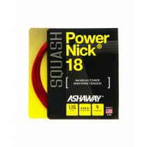 Ashaway squashsnaar PowerNick 18